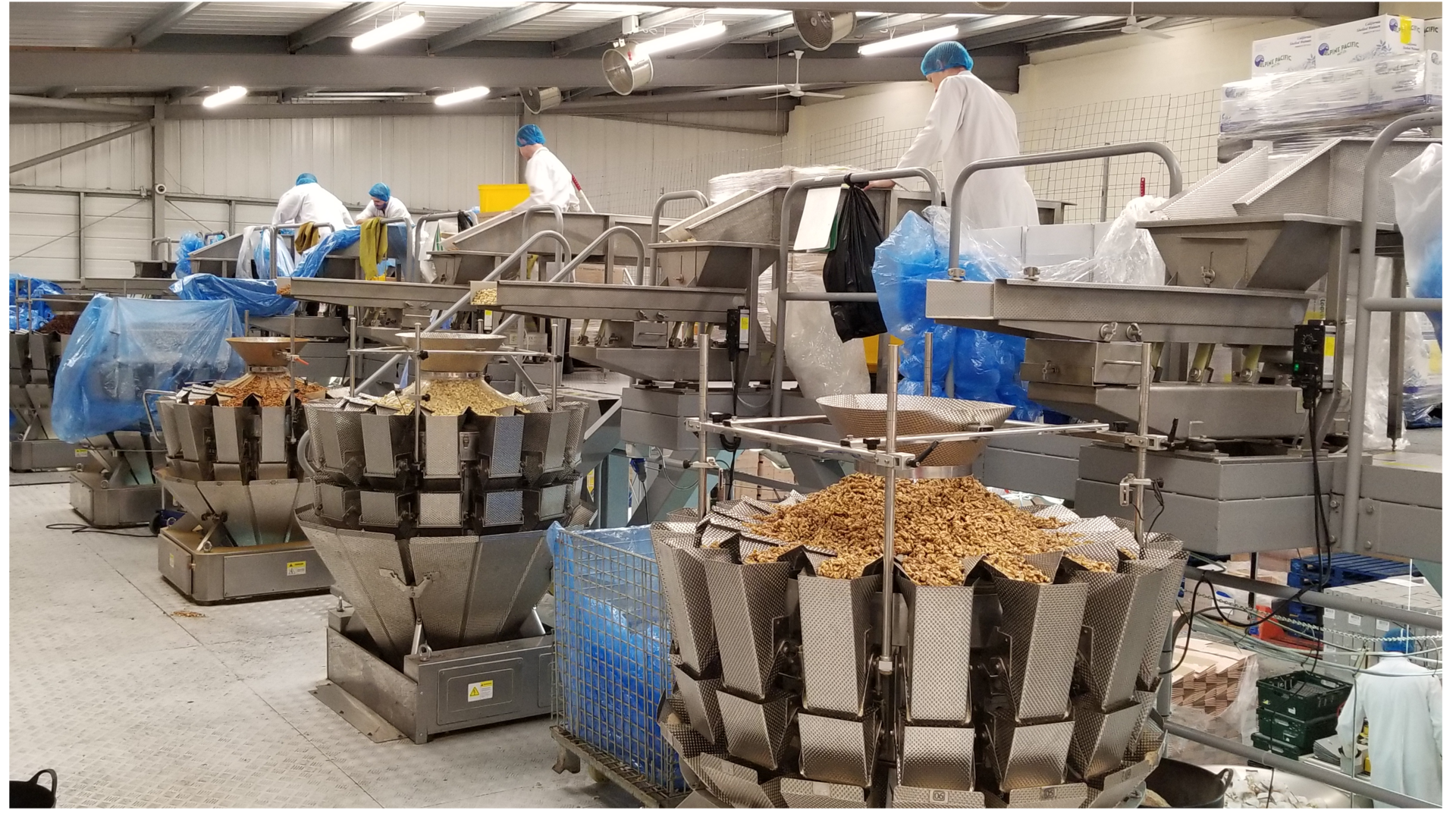 14 head multihead weigher packing system