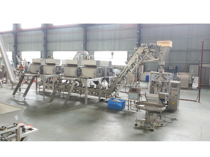32 Kinds Seasoning Mixture Packing Line