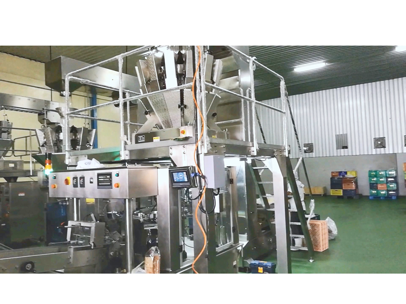 Dired Fruit Doypack Packing Line
